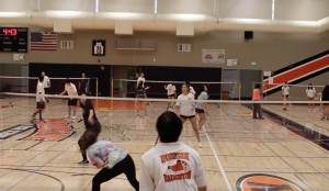 About the Badminton Team 2018