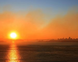 Global Warming: The multitude of effects in 2018