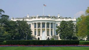 Oval Office or Bust: Nine Democratic Candidates Declare a Presidential Campaign