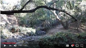 Student Film: Daniel Moreno