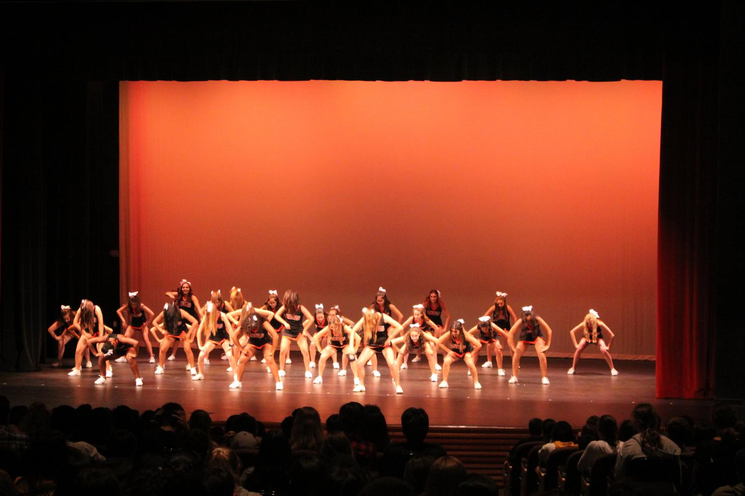 Woodside%27s+cheer+team+performs+at+the+Freshman+Assembly+