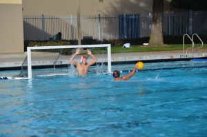 Woodside Boys Water Polo Caps Off Historic Season
