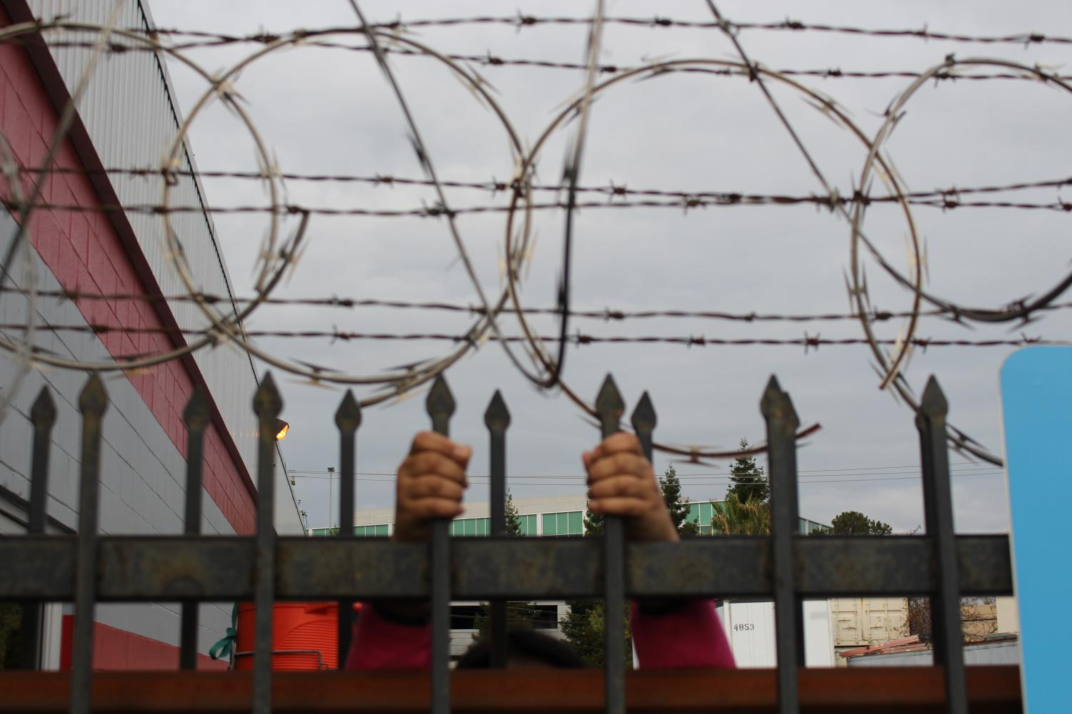 The border has approximately 700 miles of barbed wire, chain link, post-and-rail and wire mesh fencing.