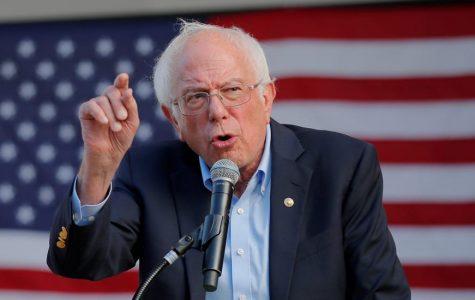 Bernie Sanders Profile