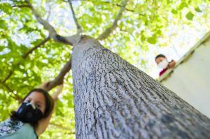 Two kids play on a tree at Rov Cloud Elementary School this past October. It highly likely that you