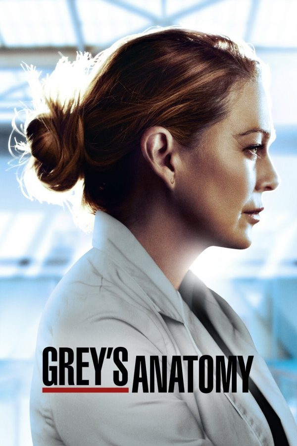 """""""Grey's Anatomy"""" is the longest-running scripted primetime show that is currently airing on ABC, as well as the longest running American primetime medical drama series."""